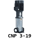 CNP 3-19 co.id